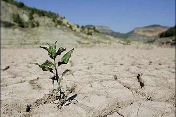 کاهش ۴۱ درصدی بارش باران در سال آبی ۹۶-۹۵