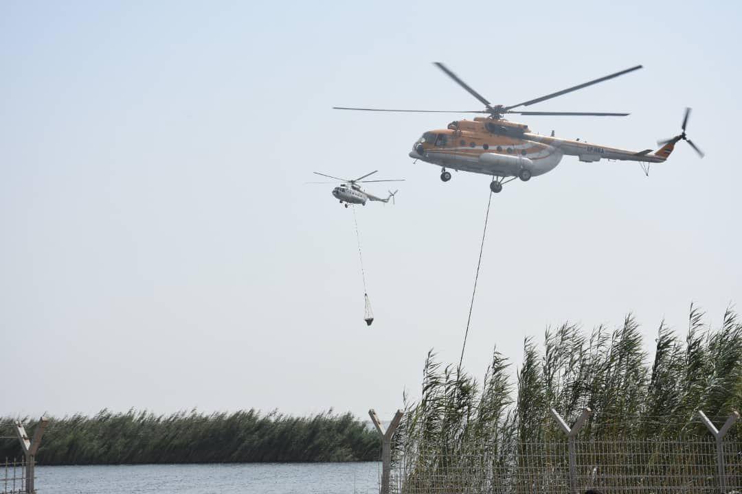 وزارت خارجه در خصوص آتشسوزی هورالعظیم عراق را پای کار بیاورد
