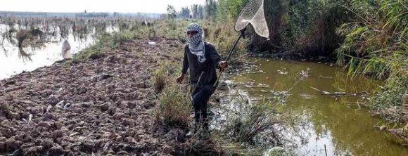 رهاسازی بی رویه آب از سد ها، دلیل وضع کنونی خوزستان است